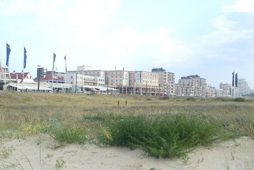 Een dagje naar Noordwijk