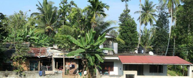Mijn tips voor Sri Lanka