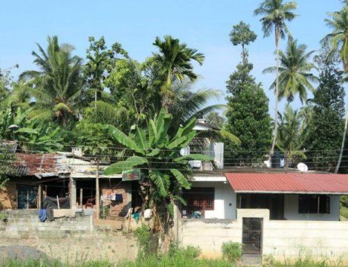 4 tips voor Sri Lanka | Derdewereldland waar je veel van zult leren!