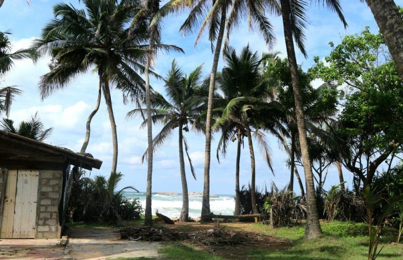 Verslag van mijn reis naar Sri Lanka deel 3