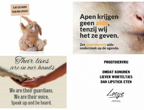 Wereldproefdierendag | Kies ook voor dierproefvrij