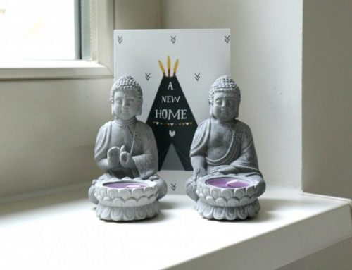 Waarom het boeddhisme zo mooi is | Geleerd in Sri Lanka!
