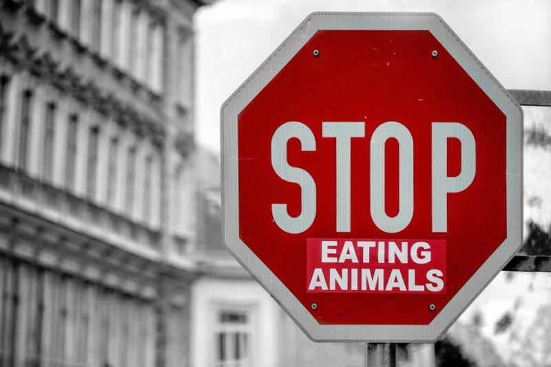 Mijn tips om vegetariër te worden