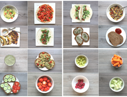 Vegan food diary 2: ontbijt, lunch, diner & snacks   Vegans eten alleen sla