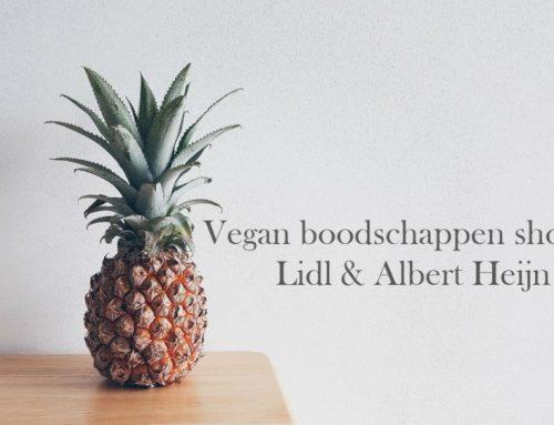 Mega vegan boodschappen shoplog | Lidl & Albert Heijn