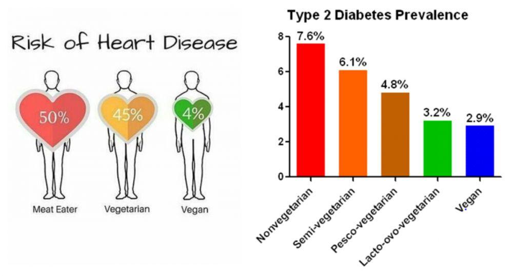 Vegan gezond