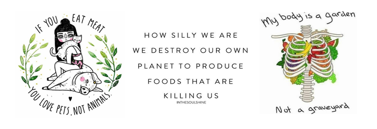 Vegan waarom