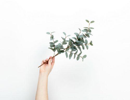 Waar wil ik heen met minimalisme? | Minder, minder…