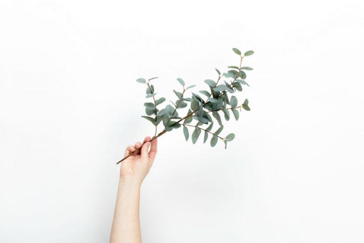 Waar wil ik heen met minimalisme