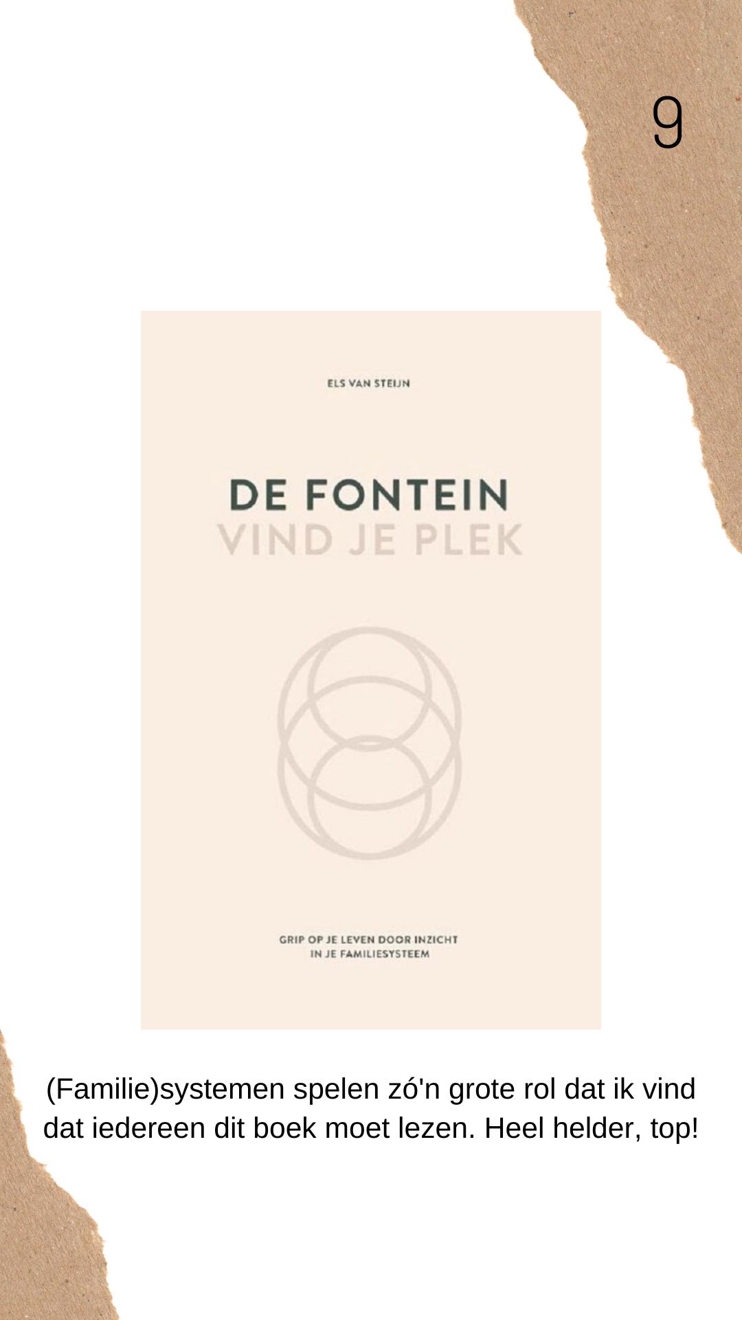 De Fontein boek review