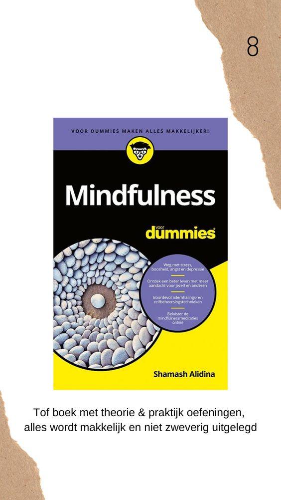 Mindfulness voor dummies boek review