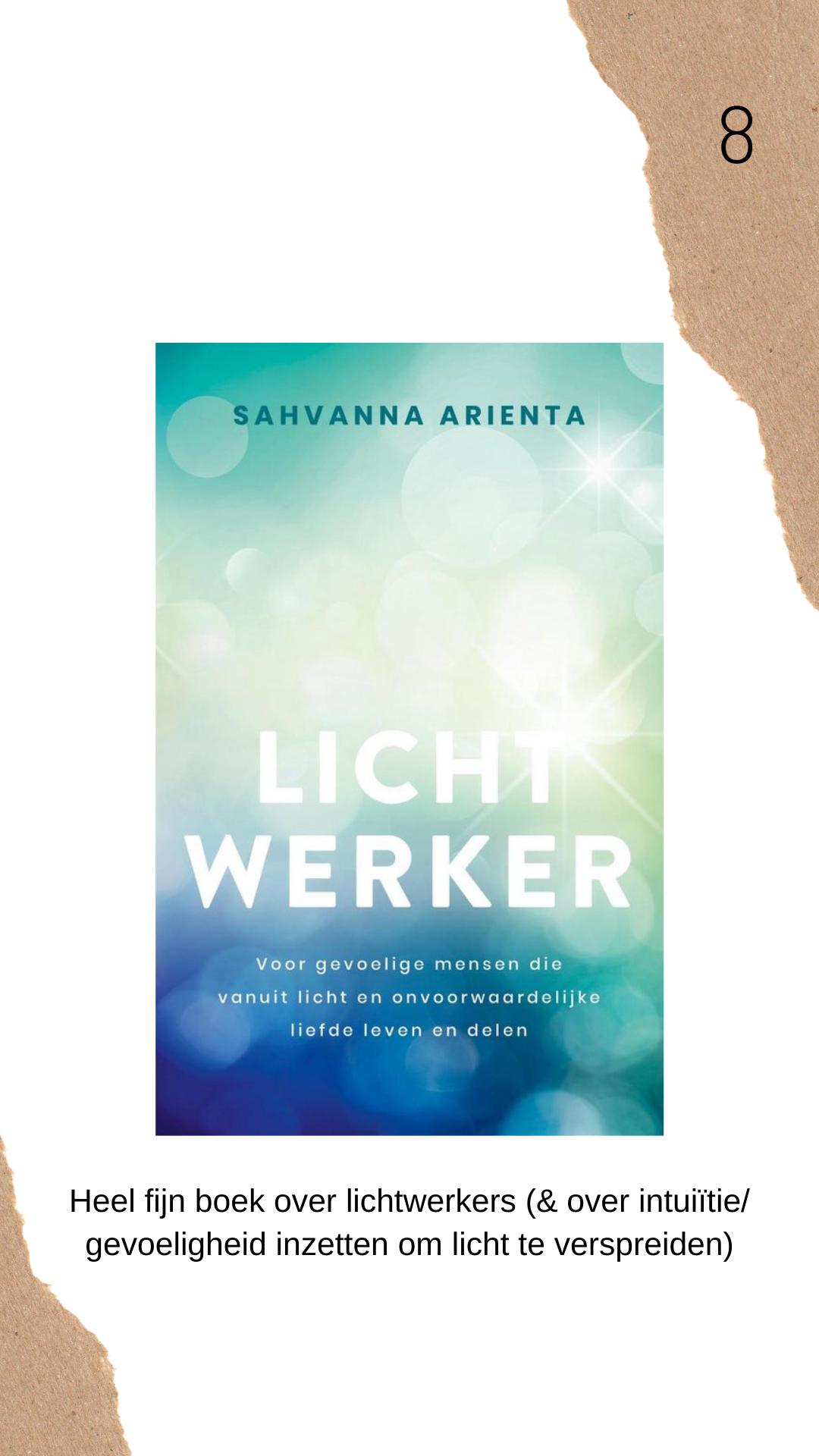 Lichtwerker boek review